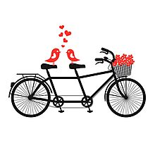 tandem bicycle with cute love birds Photographic Print