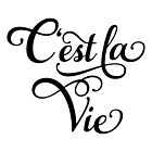 "C'est la Vie, ""that's life"" French word art, text design by beakraus"
