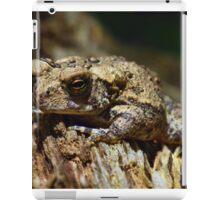 Brown Toad iPad Case/Skin
