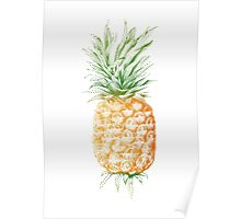 Pinapple illustration Poster