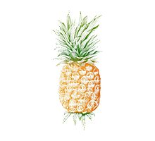 Pinapple illustration Photographic Print