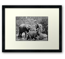 'Fun Times' Framed Print