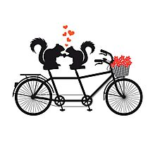 tandem bicycle with squirrels Photographic Print