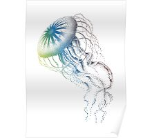colorful jellyfish, sea life, drawing, illustration Poster
