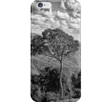 Top of the Mountain iPhone Case/Skin