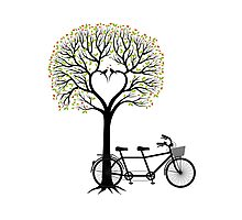 Heart tree with birds and tandem bicycle  Photographic Print