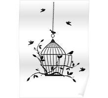 Free birds with open birdcage Poster