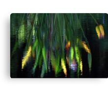 Reflection In The Pond Canvas Print