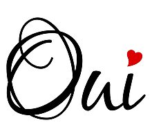 Oui, yes, French word art with red heart Photographic Print