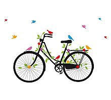 Old vintage bicycle with flowers and birds Photographic Print