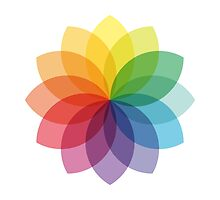 Abstract colorful flower design by beakraus