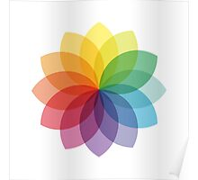 Abstract colorful flower design Poster