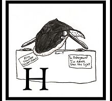 H is for Humpback by Ancell