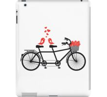 tandem bicycle with cute love birds iPad Case/Skin