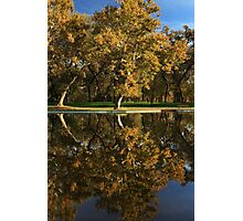 Bidwell Park Reflections Photographic Print