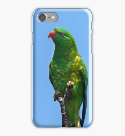 Green Scaly Breasted Lorikeet Against Blue Sky iPhone Case/Skin