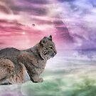 Spirit of the Bobcat by KathleenRinker