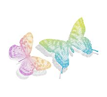 colorful abstract butterflies with shadow Photographic Print