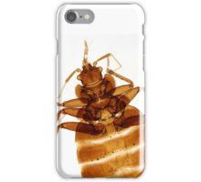 Cimex lectularis, the common bedbug iPhone Case/Skin