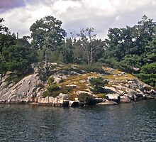 Small Island in the 1000 Islands, New York, USA by Shulie1