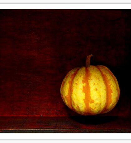 Levitate Pumpkin - Still Life Sticker