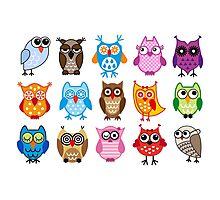 cute owls  Photographic Print