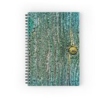 Old cracked painted texture Spiral Notebook