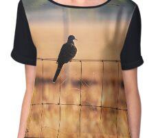 Bird On A Wire Chiffon Top