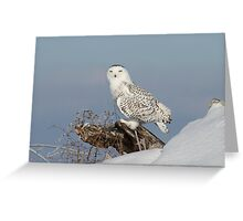 Upon her lookout Greeting Card