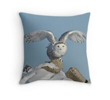 The start of her journey Throw Pillow