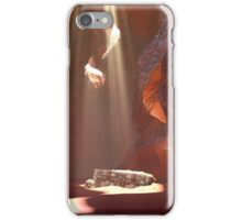 Canyon Treasure Chest iPhone Case/Skin