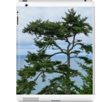 Tree at the Coast iPad Case/Skin