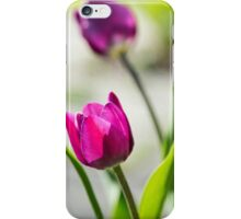 Pink and Purple Tulips iPhone Case/Skin