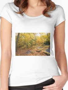 Autumn Colours in the sunshine before the storm Angus predicted tomorrow  Women's Fitted Scoop T-Shirt