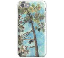 Pine Tree, Dune de Pyla iPhone Case/Skin