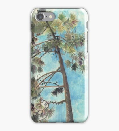 Pine Tree, Dune de Pyla iPhone Case/Skin