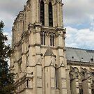 Morning Notre-Dame ©  by © Hany G. Jadaa © Prince John Photography