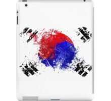 korean flag brush iPad Case/Skin