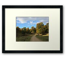 Path to Peace Framed Print