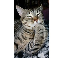 Pondering The Mysteries Of The Universe Photographic Print