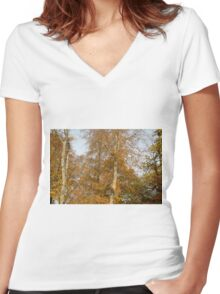 Autumn Colours in the sunshine before the storm Angus predicted tomorrow  Women's Fitted V-Neck T-Shirt