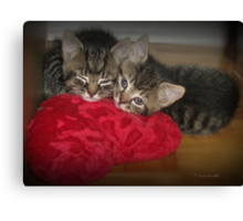 Stitched to my Heart Canvas Print