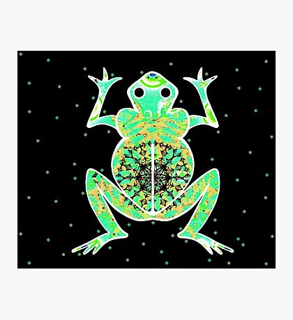GREEK FROG Photographic Print