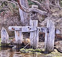 Old Deep Bay Jetty HDR by Andrew Bonnitcha