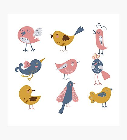 Cute Birds For Kids Photographic Print