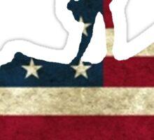 USA Vaulting Sticker