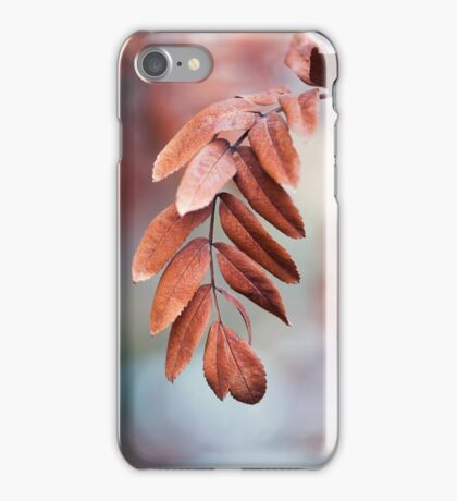 Leaves In Late Winter iPhone Case/Skin