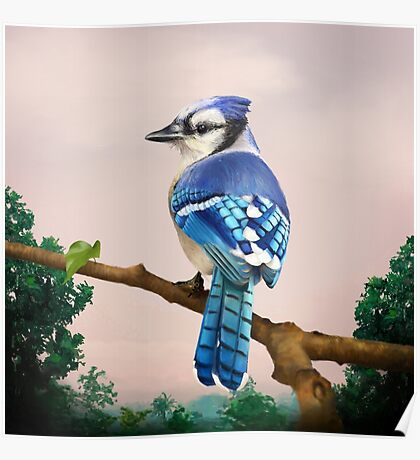 Blue Jay in Tropical background Poster