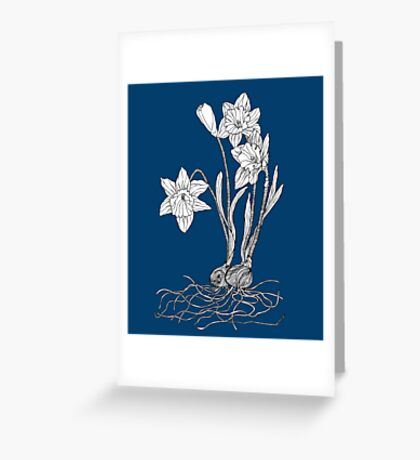 Daffodils on Midnight Blue Background Greeting Card
