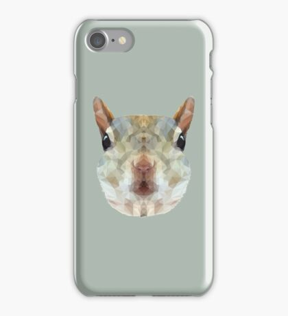 The Squirrel iPhone Case/Skin